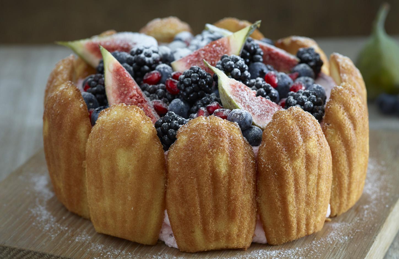 Madeleine Sponge Cake Recipe