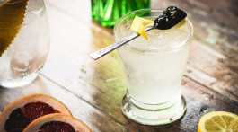 Gin at Hedonist