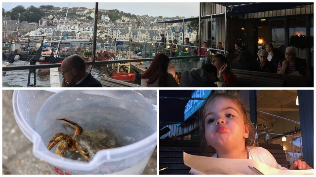 a fishy day in brixham
